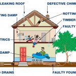 House defects that matter