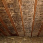 Mould on Sheathing - Angus Home Inspections
